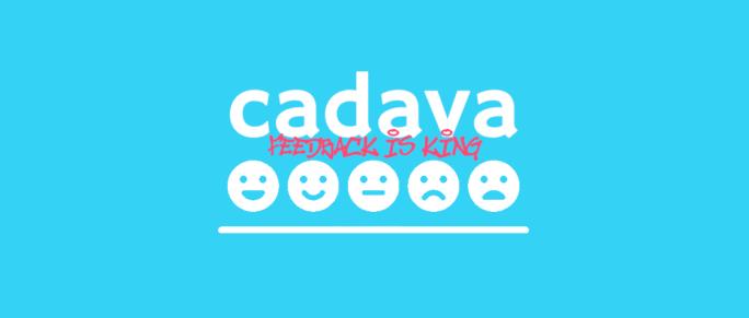 www.cadava.com, blog, nps, feedback image