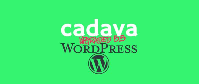 www.cadava.com:technonlogy.update, Cadava upgrades, Our WordPress servers to 5.5 Ekstine